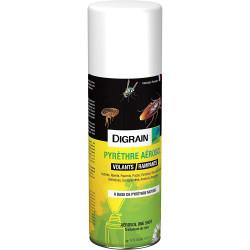Insecticide pyrethre aérosol traitement choc cafard Digrain