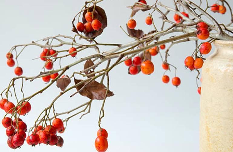comment faire un beau bouquet de branches