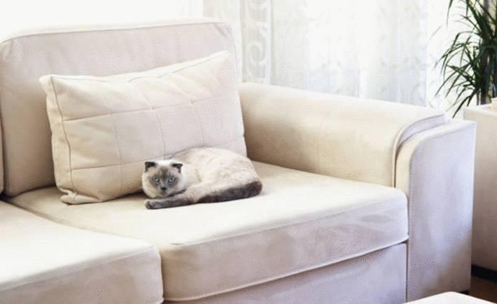 quel produit pour nettoyer un siège en cuir blanc