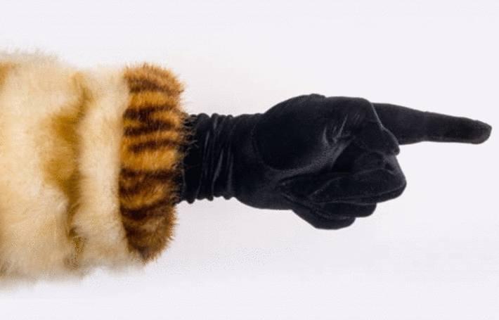 comment ranger la fourrure