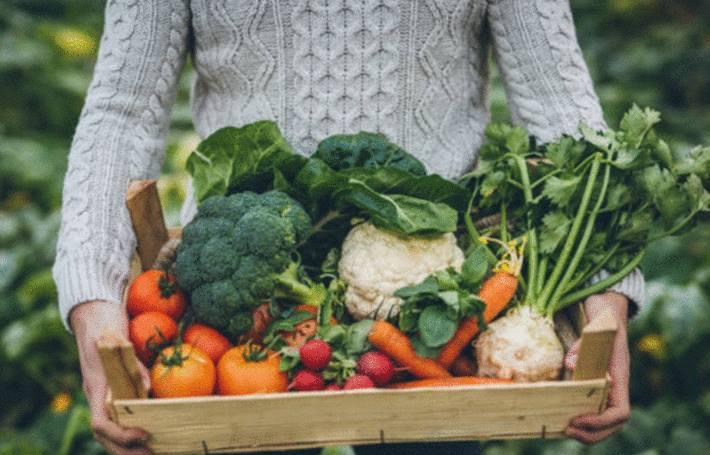 reconnaitre les bons fruits et les bons légumes