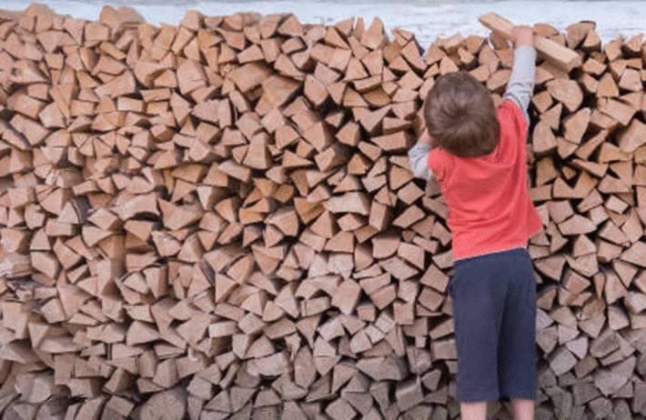 comment ranger les buches de la cheminée