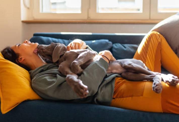 comment bien prendre soin de son chien au quotidien