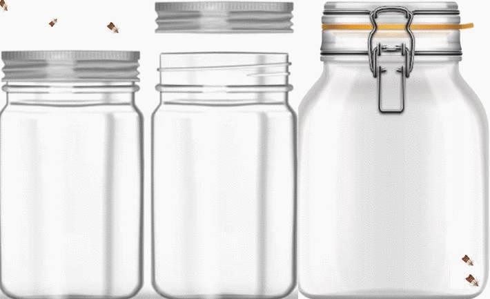 quel traitement efficace contre les mites alimentaires