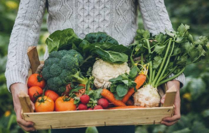 une femme tient un cajot de légumes dans les mains