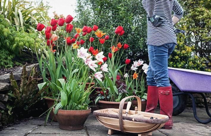 comment nettoyer et protéger terrasse des taches