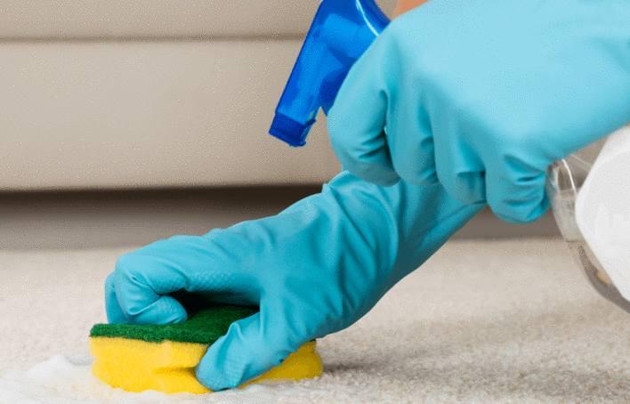 astuce pour nettoyer un tapis shaggy long poil