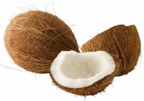 bienfaits nox de coco