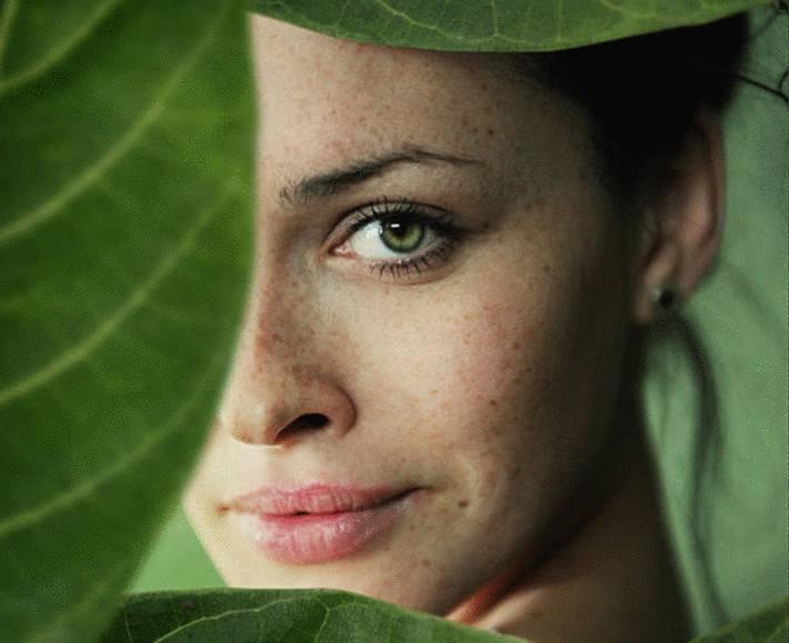 eucalyptus bienfaits pour la santé
