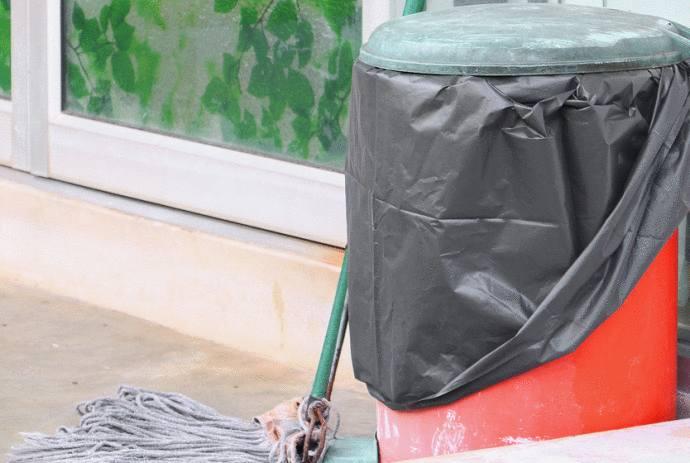 comment se débarrasser des vers dans la poubelle